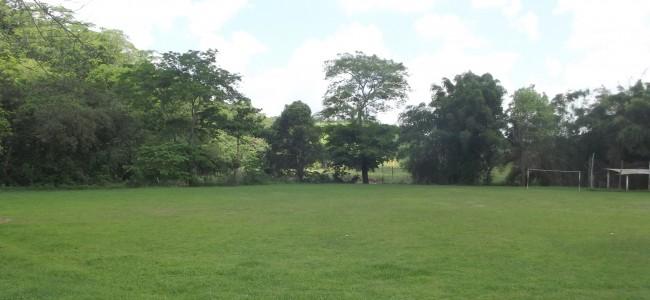 Campo de Angaturama.