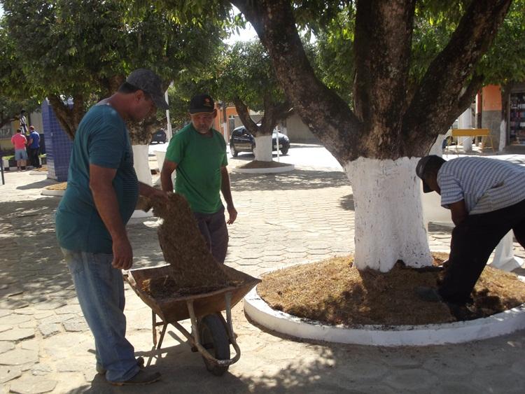Equipe de obras no plantio das gramas.