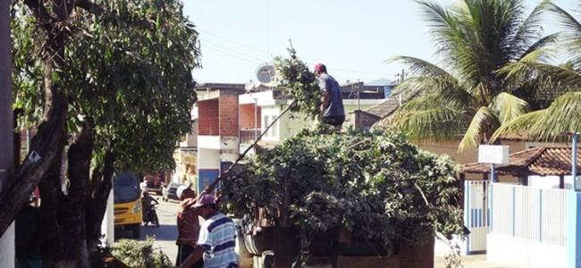 Poda de árvores em Recreio.